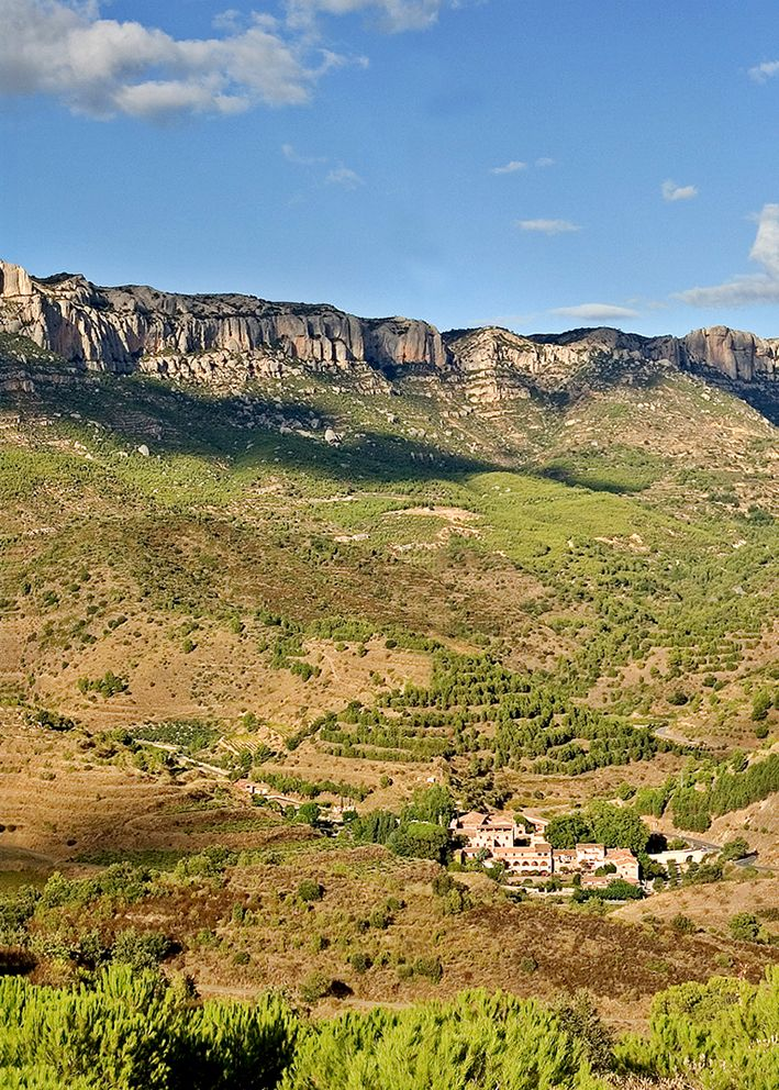wine tour priorat